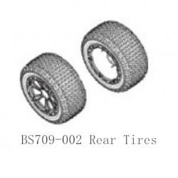 BSD Racing BS218T BS218R Parts-BS709-002 Rear Tires Unit